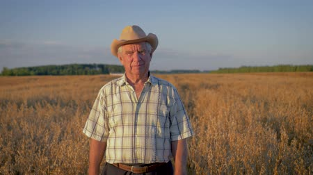 hair growth : Elderly Caucasian Man In A Cowboy Hat Walk In A Field Of Wheat At Sunset
