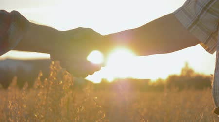 Handshake Of Two Businessmen Farmers In The Field At Sunset