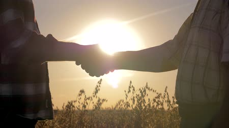 Handshake Of Two Businessmen Farmers In The Field Background Sunset