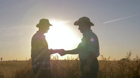 Handshake Of Farmer And Worker In Hat In Agricultural Field Background Sunset