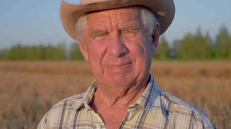 Portrait Of An Old Caucasian Farmer Agronomist In A Cowboy Hat On Wheat Field Wideo
