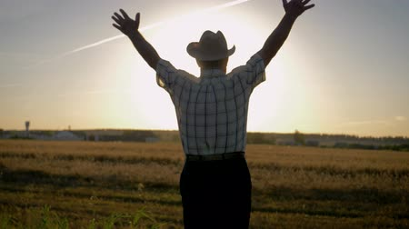 Old Farmer Raises His Hands Up Toward The Sun Standing In A Field Of Wheat Wideo