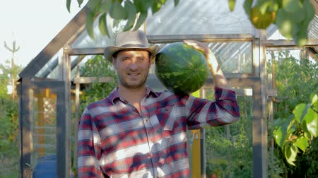 Portrait Man Farmer In Hat Holding A Ripe Watermelon On Greenhouse Background