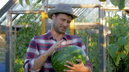 Portrait Man Farmer Holding A Ripe Watermelon On Greenhouse Background At Garden