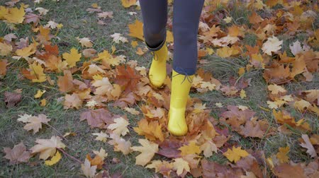 Women Feet In Boots Go On The Park In The Autumn And Kick Yellow Fallen Leaves Wideo