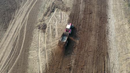 scatters : Tractor Rides Through The Agricultural Field And Fertilizing It With Manure Stock Footage