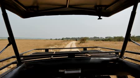 poros : View From Safari Cars Traveling On Road In African Savannah Wildlife