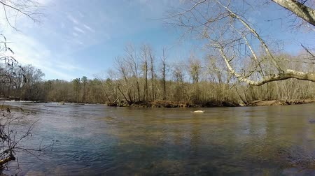 deski : Sunny River Panoramic