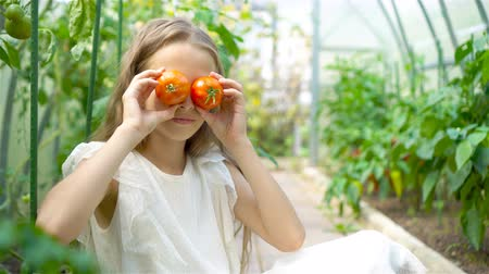can : Portrait of kid with the big tomato in hands in greenhouse
