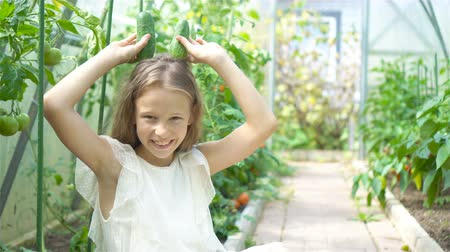 spinaci : Adorable little girl harvesting cucumbers and tomatoes in greenhouse.