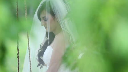 pans : wedding day HD Stock Footage