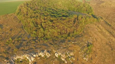 роща : picturesque landscape of fields and groves under a blue sky. Aerofutazh. View from above. Стоковые видеозаписи