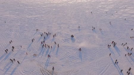 parachuting : aerial view. Winter vacation on the frozen lake. Snowmobile, horses