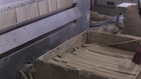 laboring : equipment in the furniture factory. worker cuts plywood into slats