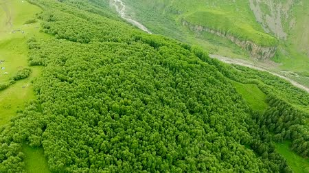 mediaeval : Fantastic aerial view of mountains covered with green forest. view from above. Kazbegi, Stepantsminda