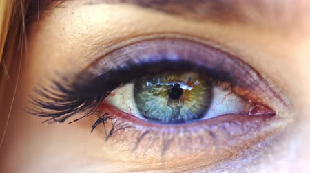 olhar fixo : Closeup of female green eye. green eyes screwed up Stock Footage