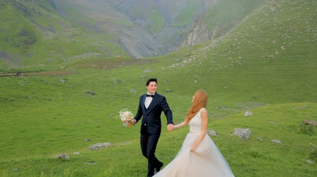fiancee : Enamored newlyweds walk in the meadow against the backdrop of beautiful mountains.