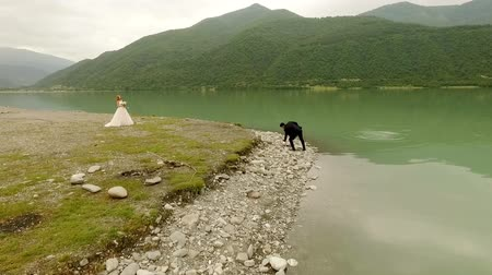 tampado : Aerial view. Bride and groom on the background of the river and mountains.
