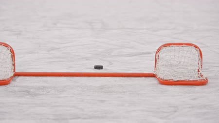 striker : Winter sports. Hockey. The puck is in the gate