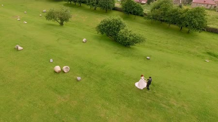 fiancee : Aerial view of the bride and groom on the background of a green meadow. Georgia. Stock Footage