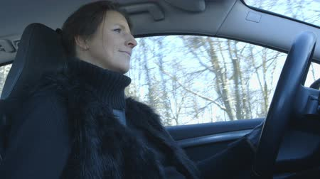 аренда : Winter Driving - Woman is driving a car on a beautiful winter day