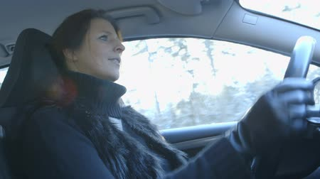 luva : Winter Driving - Woman is driving a car on a beautiful winter day