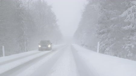 hóvihar : Driving on a snowy country road at heavy snowfall on a foggy day - ProRes