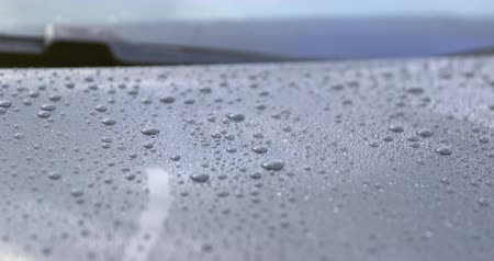Close-up of a polished hood of a car after a rain shower - change of focus - ProRes