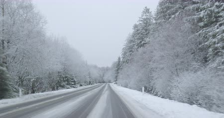 Winter Driving - driving on a snowy country road - POV shot - ProRes Stock mozgókép