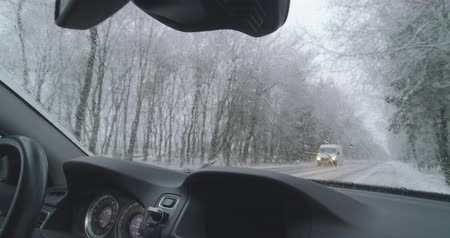 вереск : Winter driving - standing on the emergengy lane - POV shot - hand held camera - shallow depth of field - ProRes