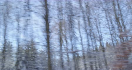 Winter Driving - driving on a country road - view out of the side window - ProRes