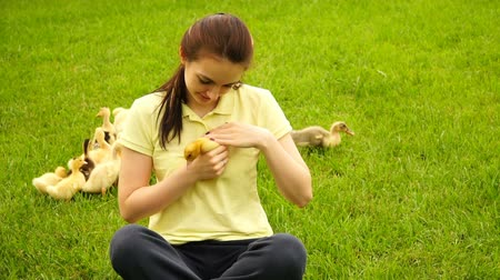 ducky : footage woman holding a little duck in hand and sitting on green grass