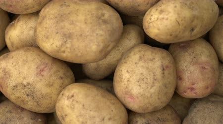 čištěný : Potato pile rotating motion background.
