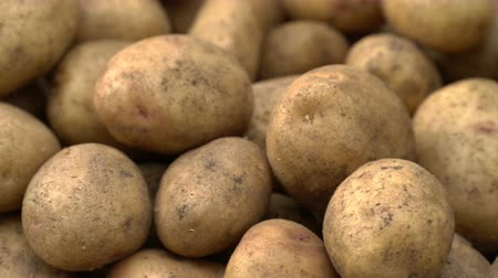 skins : Potato pile rotating motion background.