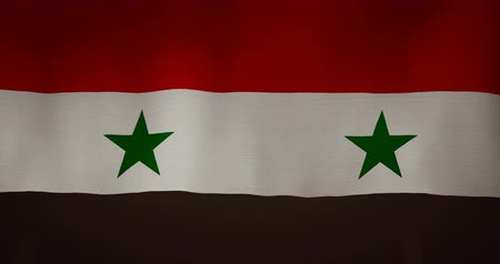 damasco : Syria flag fabric texture waving in the wind