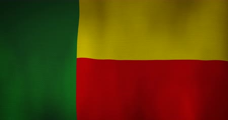 flap : Benin flag fabric texture waving in the wind. Stock Footage