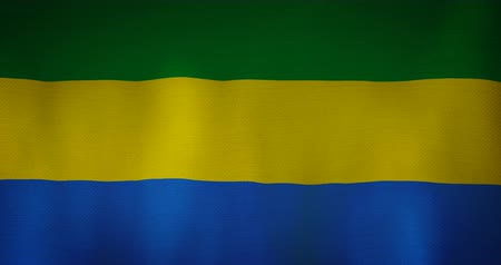 silvery : Gabon flag fabric texture waving in the wind. Stock Footage
