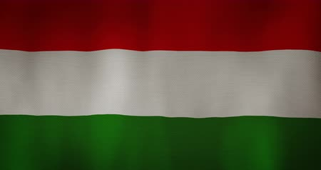 венгерский : Hungarian Republic flag fabric texture waving in the wind.