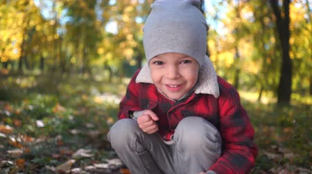 portrait of a happy boy at the autumn park