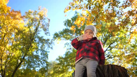 little boy playing on wooden stump and waving hand at camera in autumn park