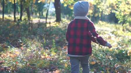 happy funny little boy running in autumn park Stock Footage