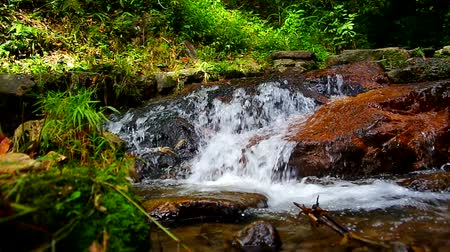 time flow : water flow in the cascade and the riparian scene in tropical forest, Thailand
