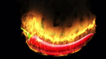 chili : Burning hot chili pepper with flame on black. Time freeze effect. Various flame size. Stock Footage