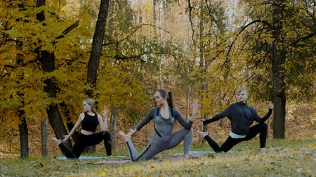 duše : Group of Young women doing Yoga action exercise healthy in the park. Health lifestyle concept.