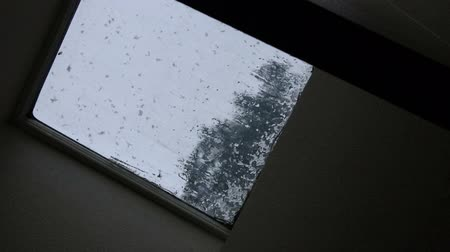 световой люк : blurred tree through skylight with snow