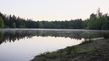 refletir : fog swirling over a still lake Stock Footage