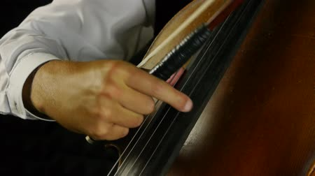 criar : Cellist playing on cello. Strum the strings. Vídeos