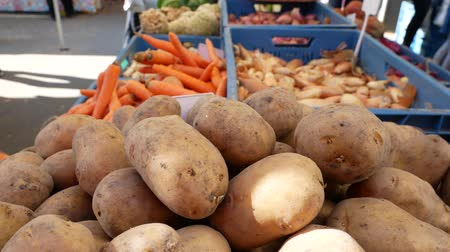 cebula : Farmers food market stall with a variety of organic vegetables for example, potatoes, onion carrots and more.