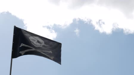 kılıç : The pirate flag shake in the air in the blue sky background.