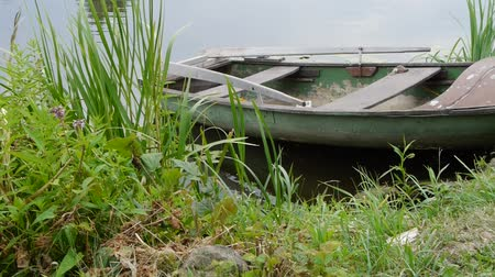rowboat : Small fishing boat on the river. Water plants along the river bank. Stock Footage